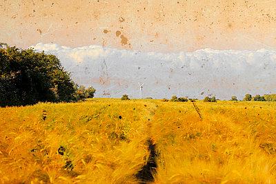 Landschaft im Gemälde-Stil - p450m916514 von Hanka Steidle