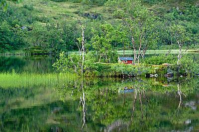 p816m745014 von Bjørn Jørgensen