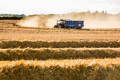 A combine harvester at work - p1057m2008298 by Stephen Shepherd