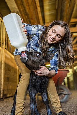 Caucasian farmer feeding calf milk from bottle - p555m1305256 by Eric Raptosh Photography