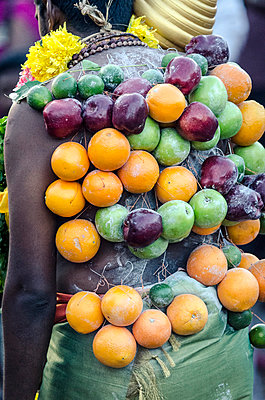 A pierced devotee laden with fruit - p871m873382 by Andrew Taylor