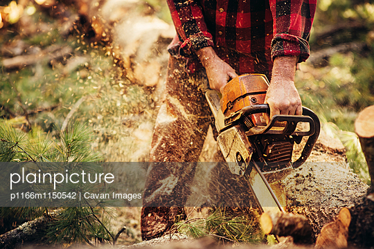 p1166m1150542 von Cavan Images