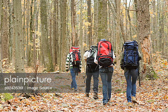 Young people hiking through forest