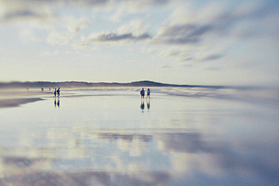 romantic couples walking on a beach at sunset - p1072m1163389 by Stephen Allsopp