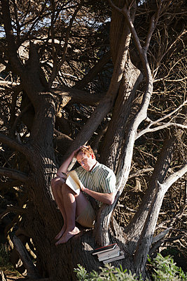 Young man sitting in tree, reading - p956m1044217 by Anna Quinn