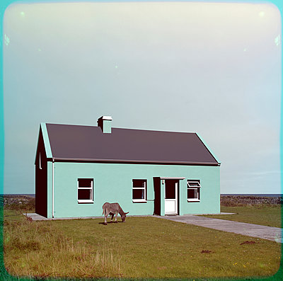 Esel vor dem Haus - p230m889905 von Peter Franck