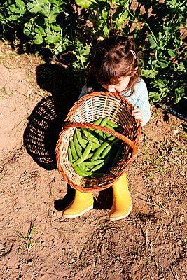 Little girl sitting on ground with basket of harvested pea pods - p300m2188630 by Gemma Ferrando