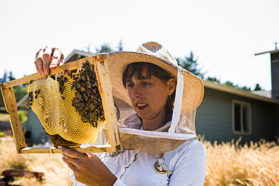 Female beekeeper examining honeycomb frame during sunny day - p1166m1508431 by Cavan Images