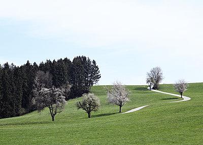 Landscape in sprin - p1229m2273163 by noa-mar