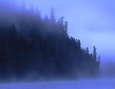 Vancouver Island - p1016m792628 von Jochen Knobloch