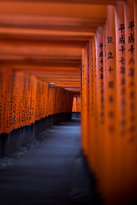 Path through torii - p445m911845 by Marie Docher