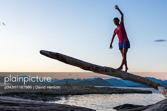 p343m1167986 von David Hanson
