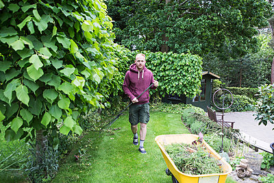 Young man collecting weeds in wheelbarrow - p1026m1164179 by Patrick Frost