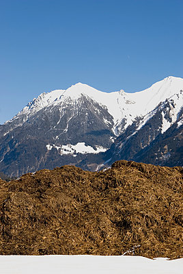 Dunghill in the alps - p260m900881 by Frank Dan Hofacker