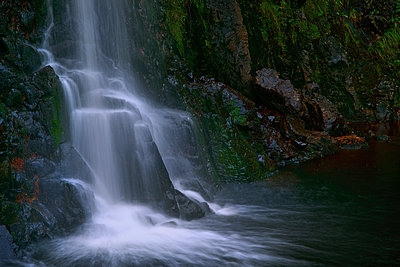 Waterfall flowing over rocky cliff - p555m1410606 by Chris Clor