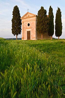 Chapel Madonna di Vitaleta, Val d'Orcia, near Pienza, Tuscany, Italy, Europe - p8713193 by John Woodworth