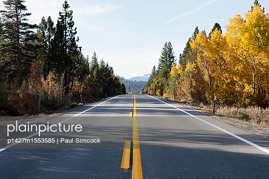 p1427m1553585 von Paul Simcock