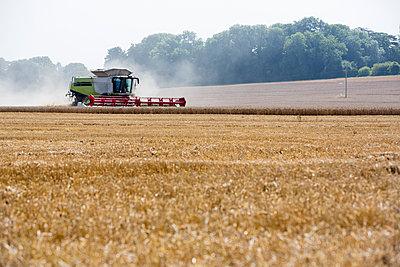 Traktor - p1057m1161700 von Stephen Shepherd