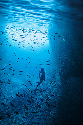 Woman snorkeling underwater among school of fish, Vava'u, Tonga, Pacific Ocean - p1023m2024445 by Martin Barraud
