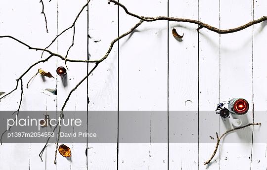 Zweig und Teelichte - p1397m2054553 von David Prince