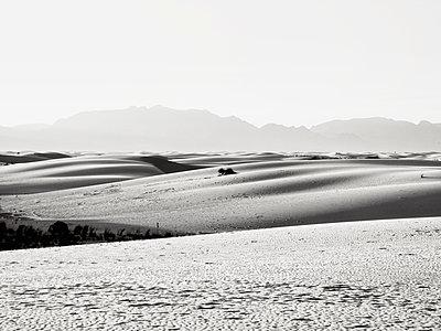 USA, New Mexico, White Sands, Dunes - p1154m2280937 by Tom Hogan
