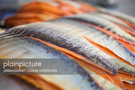 Close-up of fish arranged in food processing plant - p300m2225027 by LOUIS CHRISTIAN