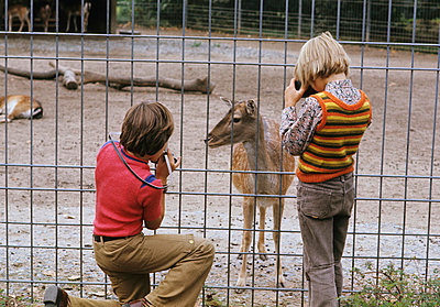 Taking photos in a zoo - p0460583 by Hexx