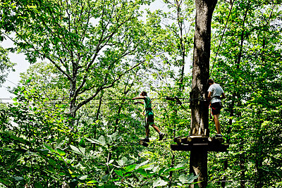 Boys climbing in trees - p445m1051400 by Marie Docher
