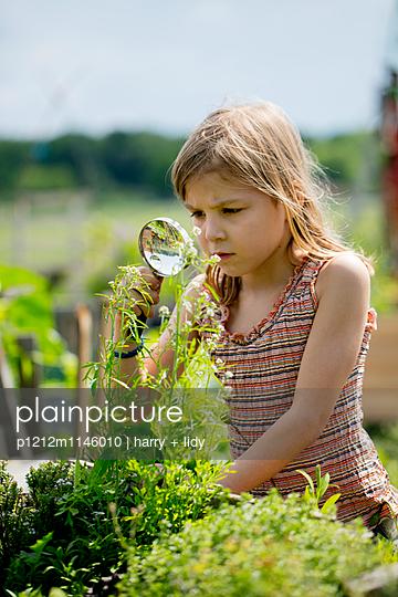 Mädchen mit Lupe im Garten - p1212m1146010 von harry + lidy