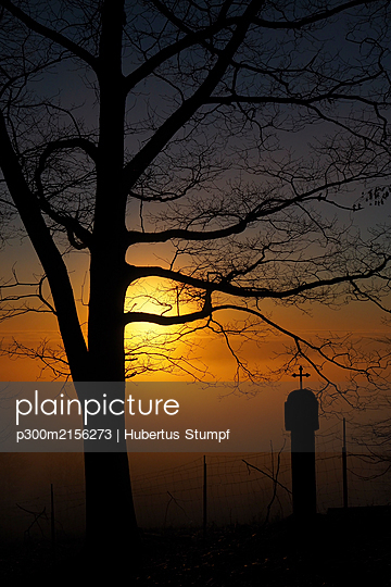 Germany, Bavaria, Silhouettes of bare tree and landmark shrine at sunset - p300m2156273 by Hubertus Stumpf