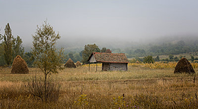 Morning mist in a village - p1072m1106056f by Grigore Roibu
