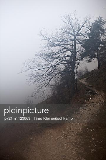 Wanderweg im Nebel - p721m1123869 von Timo Kleinerüschkamp