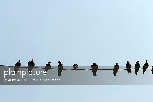 Einer ist anders - p949m948573 von Frauke Schumann