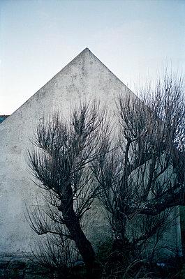 Haus mit Baum - p1141m943262 von Annette Fischer