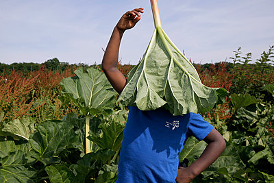 Boy putting on hat of rhubarb leaf - p1307m1585031 by Agnès Deschamps