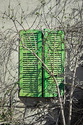 Grüner Fensterladen - p248m898659 von BY