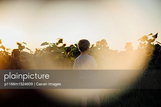 p1166m1524609 von Cavan Images