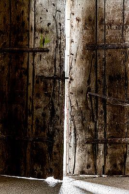 Secret door - p248m1034260 by BY