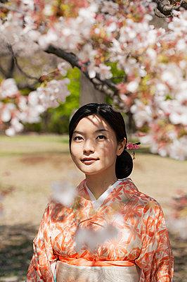 Beautiful serene young woman in kimono below cherry blossom tree - p301m2271989 by Sven Hagolani