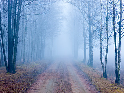 Dirt track in fog - p312m1229098 by Stefan Isaksson
