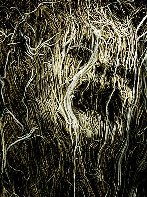 Nightmare - p56711086 by daniel belet