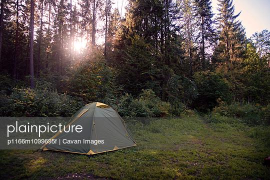 p1166m1099695f von Cavan Images