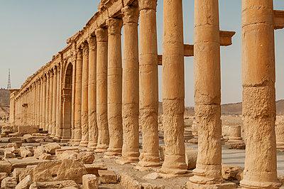 Ruinen der Oasenstadt und UNESCO-Weltkulturerbe Palmyra/Tadmor nahe Damaskus, Syrien - p1493m2063573 von Alexander Mertsch