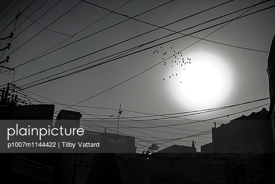 Birds passing through a big white sun - p1007m1144422 by Tilby Vattard