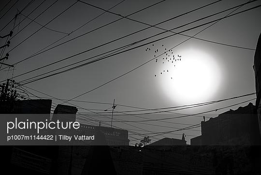 Birds passing through a big white sun - p1007m1144422 by Tilby Vattard