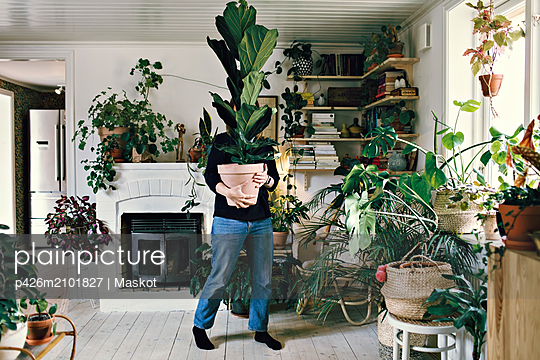 Full length of woman carrying potted plant at home - p426m2101827 by Maskot