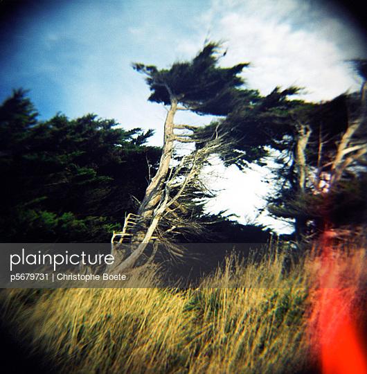 Pinhole camera - p5679731 by Christophe Boete
