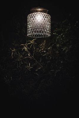 Twigs under pendant lamp - p1150m2076429 by Elise Ortiou Campion