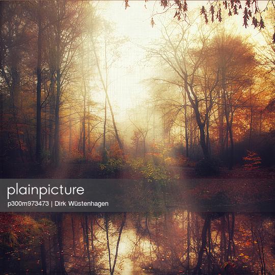 Germany, near Wuppertal, Pond in a park in autumn - p300m973473 by Dirk Wüstenhagen