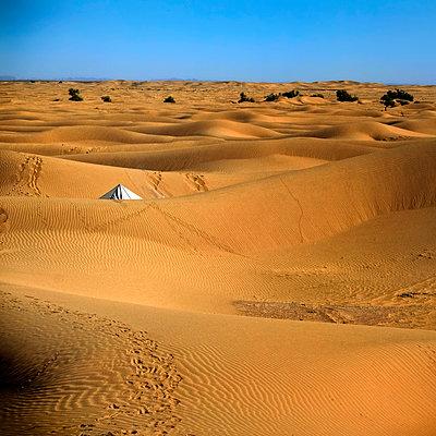 Dune scenery - p636m2021665 by François-Xavier Prévot